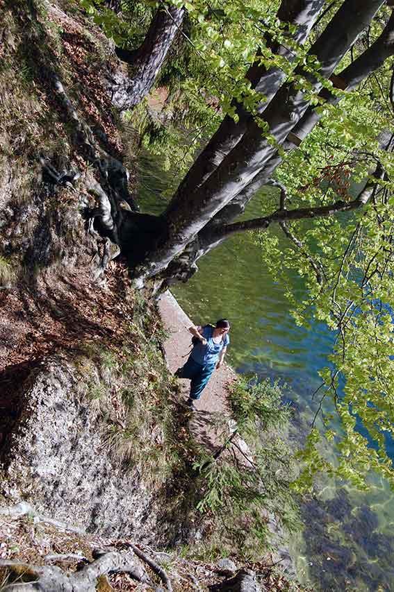 Naturkinder klettern im Frühlingswald