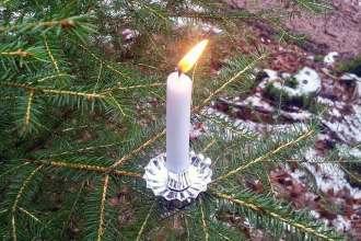 Waldweihnacht und Alternativen zum Tannenbaum