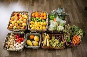 Foodsaving in Deiner Stadt: Keine Lebensmittel im Müll