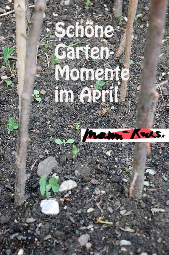 Schöne Momente im April
