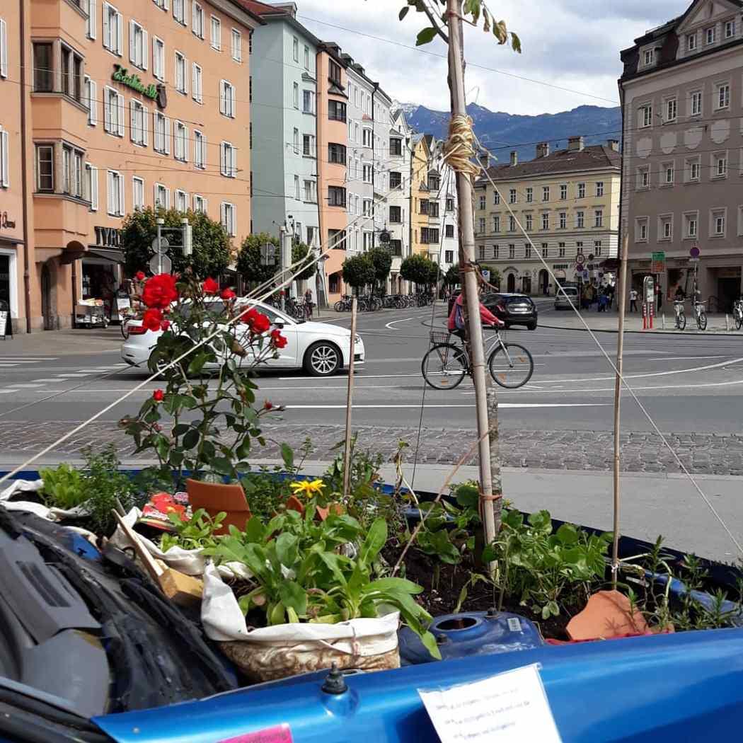 Kostnix Kunstprojekt Innsbruck