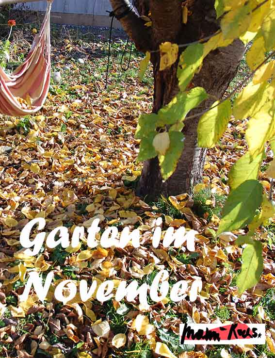 Garten im November