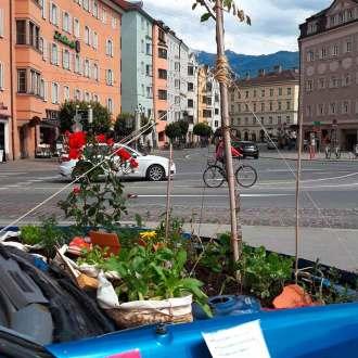 nachhaltig leben in Innsbruck