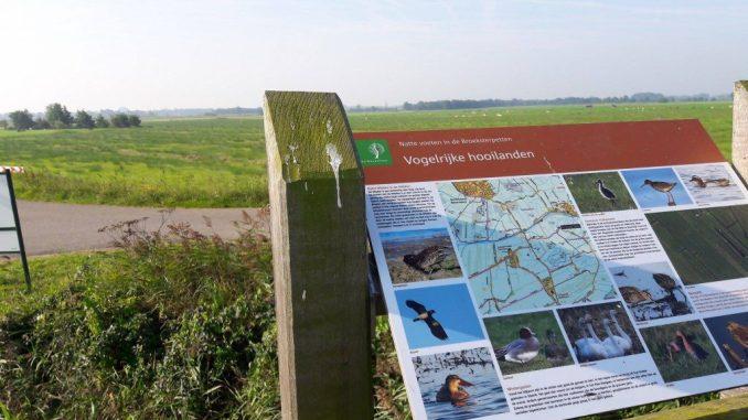 Friese Wouden, vogels kijken, Surhuizumermieden