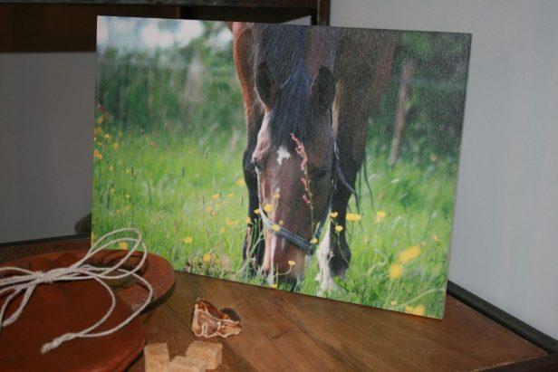 De foto is afgedrukt op een dunne houtplaat met een lichte houtstructuur.