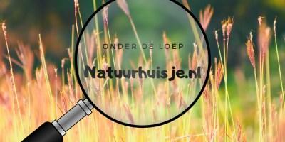 Natuurhuisje.nl onder de loep