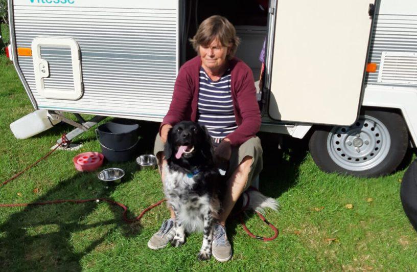 Met de hond naar het buitenland