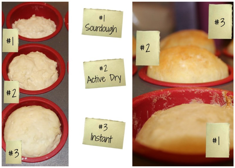 Science-of-Yeast-Baking
