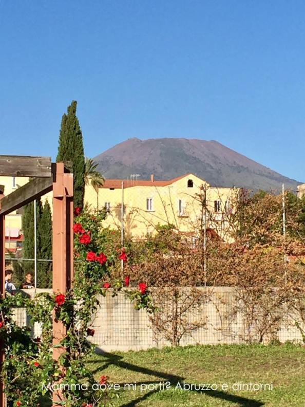 Vesuvio-Ercolano