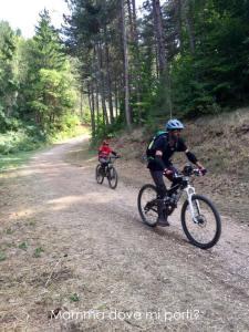 Sentieri-Roccaraso Località Ombrellone - Montagna con bambini Abruzzo