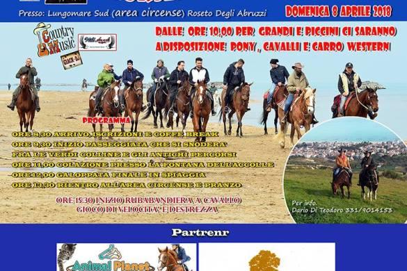 Horses-on-the-Beach-Roseto-degli-Abruzzi-TE