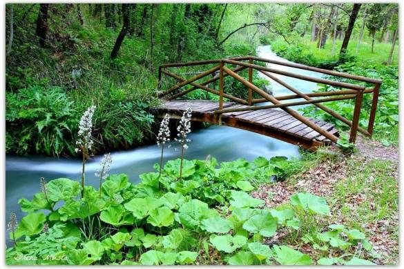 Parco-Fluviale-delle-Acquevive-Taranta-Peligna-CH