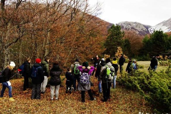Passeggiata-per-famiglie-nel-Bosco-di-Sant-Antonio-Pescocostanzo-AQ