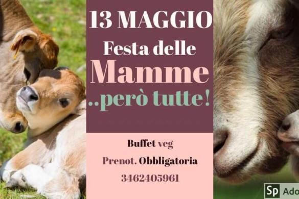 Città Sant'Angelo (Pe) - Festa delle Mamme - Oasi Verde Mearas