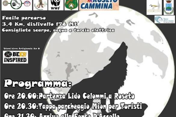 La-Notte-dei-Lupi-alla-Riserva-Borsacchio-Roseto-degli-Abruzzi-Teramo