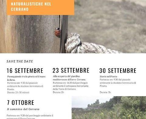 Documentiamoci-camminando-Torre-del-Cerrano-Pineto-TE- Eventi per bambini Teramo