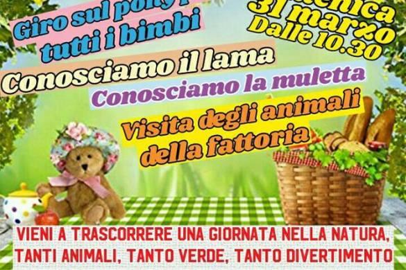 Picnic-di-primavera-LArcobaleno-ASD-Pianella-Pescara