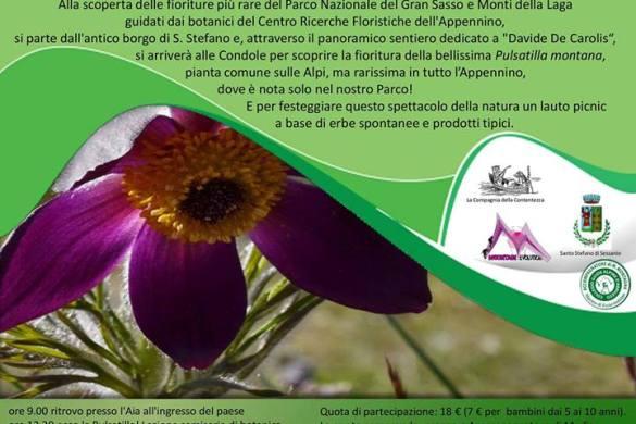Il-Parco-in-Fiore-Santo-Stefano-di-Sessanio-LAquila