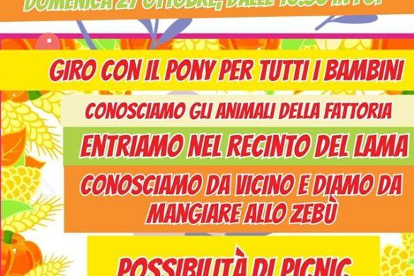 Domenica-in-Fattoria-LArcobaleno-Asd-Pianella-Pescara