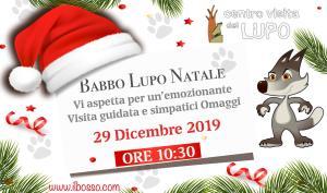 Visita-guidata-Centro-Visita-del-Lupo-Popoli-Pescara