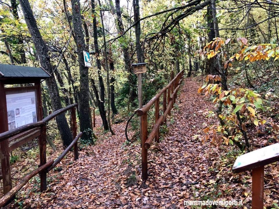 Percorso per disabili presso Riserva Naturale Castel Cerreto - Escursioni in Abruzzo in passeggino