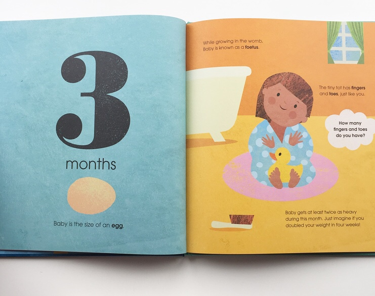 Extract from How big is our baby? showing 3 months in pregnancy