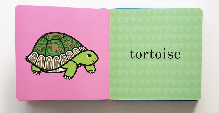 Extract from board book Pets by Jane Foster showing a tortoise as a pet.