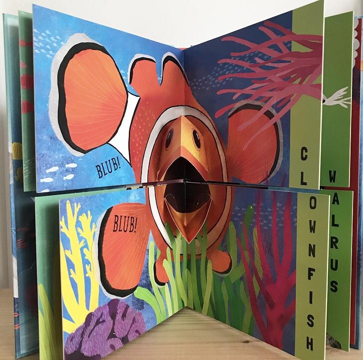 Flip flap snap ocean book review on mammafilz.com