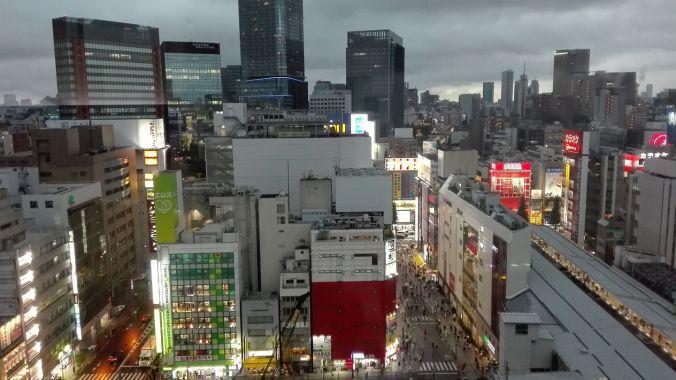 cosa vedere in Giappone , vista dal nostro hotel