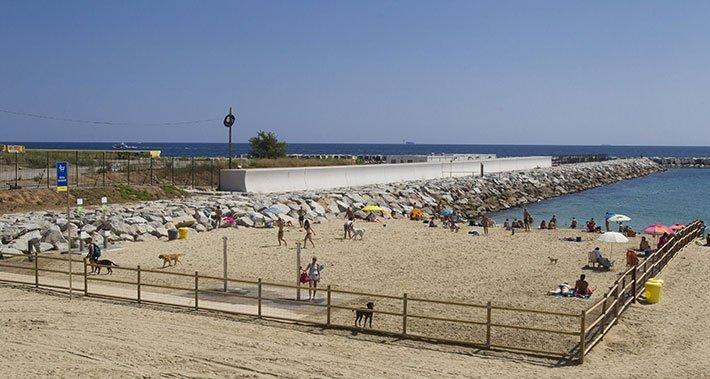 Playa para perros a Barcellona