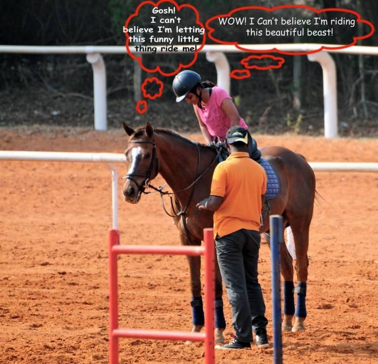 horse riding falls