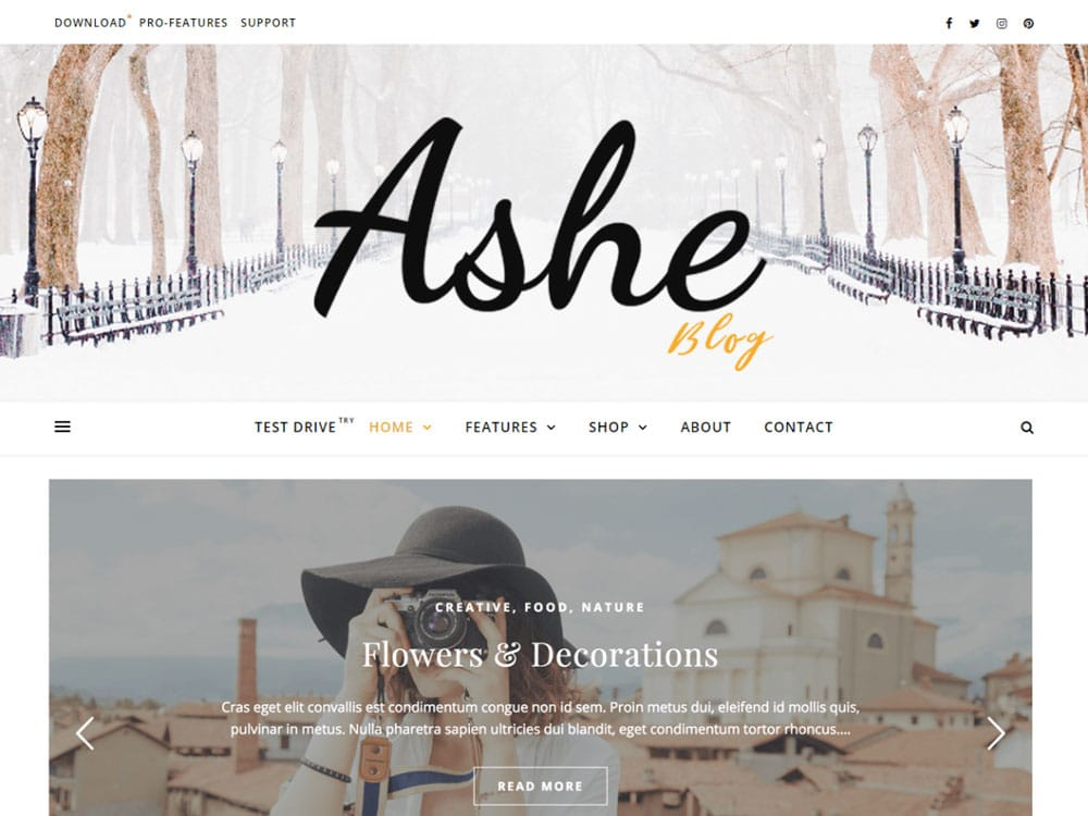 Bloggeuse débutante, thème Ashe