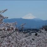 富士山と甲府の夜景を独占する温泉 ホテル神の湯の11種類のお風呂