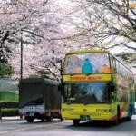 ちょっとの時間に歩かずにオープンバスで東京観光はいかがですか?