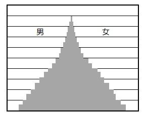 人口ピラミッドの富士山型