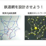 粘菌によって計算する「粘菌コンピュータ」
