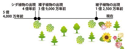 地質時代-陸上植物の繁栄-