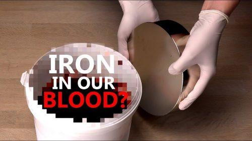 血液に含まれる鉄分は磁石に反応するのか??超強力磁石を使った実験