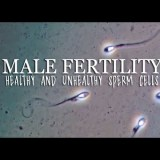 ヒトの精子の正常細胞と奇形細胞を顕微鏡で観察してみた