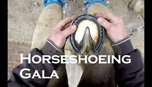 鉄製の蹄鉄を馬のひづめにつける様子を撮影してみた