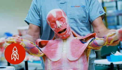 医学研究で使用するための合成死体がリアルすぎる