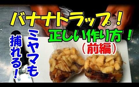 【カブトムシ・クワガタムシ】バナナトラップの作り方