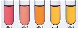 酸と塩基の指示薬
