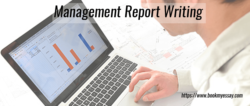management report writing