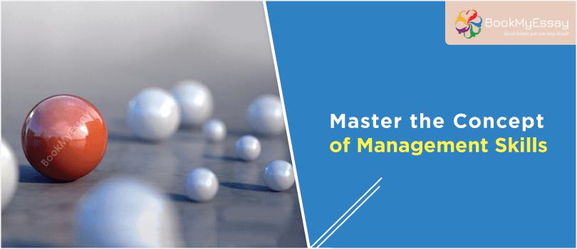 management-assignment-help-service