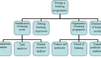 8 steps in job analysis management education how to design a training programme ccuart Images