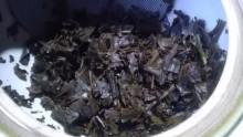 国産紅茶20130919秘密3