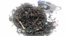 国産紅茶20131026瀬戸谷もみじ1
