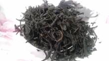 国産紅茶20131029パパティー1