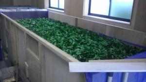 加賀の紅茶の萎凋箱